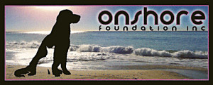 on shore foundation logo