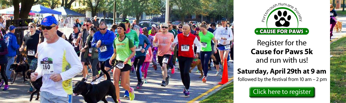 Register for the Cause for Paws 5k